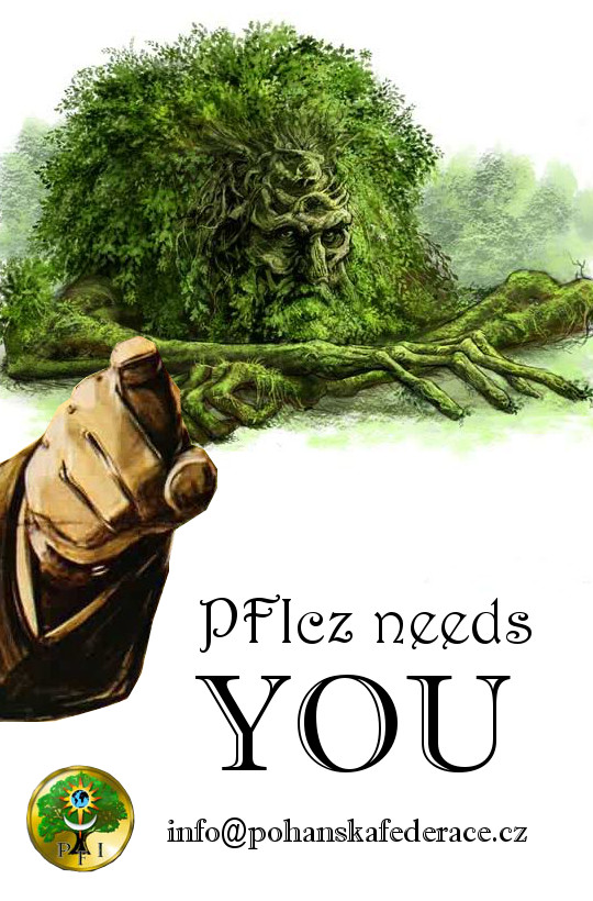 PFI needs you1